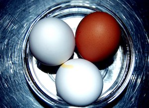 Oeuf vegan : 3 alternatives (et pourquoi les vegans ne mangent pas d'oeuf)