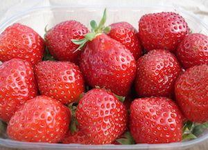 recette fraisier facile